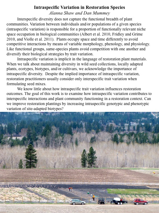 We know little about how intraspecific trait variation influences restoration outcomes. The goal of this work is to examine how intraspecific variation contributes to interspecific interactions and plant community functioning in a restoration context. Can we improve restoration plantings by increasing intraspecific genotypic and phenotypic variation of site-adapted biotypes?