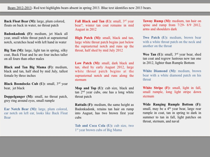 Bears 2012-2013- Red text highlights bears absent in spring 2013. Blue text identifies new 2013 bears.