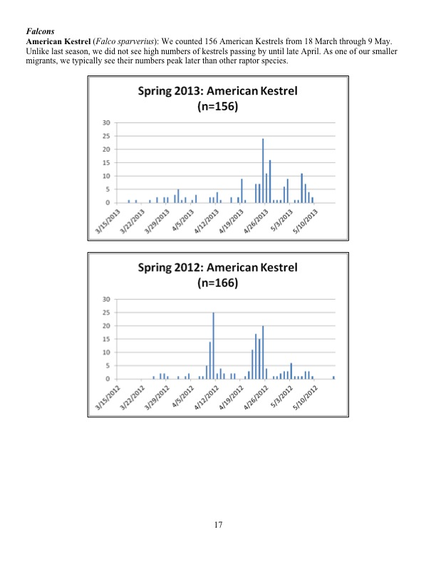 We counted 156 American Kestrels from 18 March through 9 May. Unlike last season, we did not see high numbers of kestrels passing by until late April. As one of our smaller migrants, we typically see their numbers peak later than other raptor species.