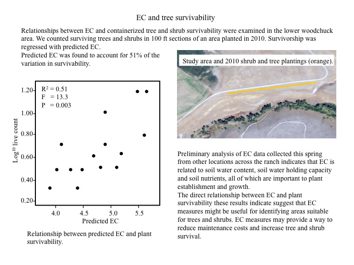 EC and Tree Survivability