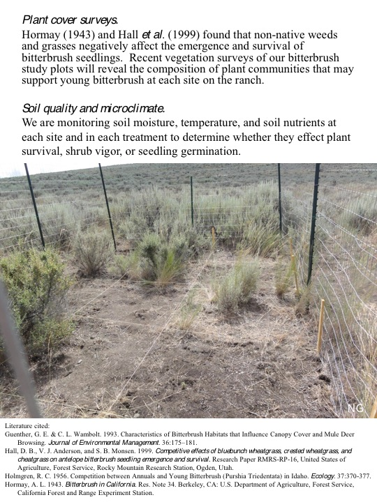 Bitterbrush Competition Removal Update: Plant Cover Surveys and Literature Cited