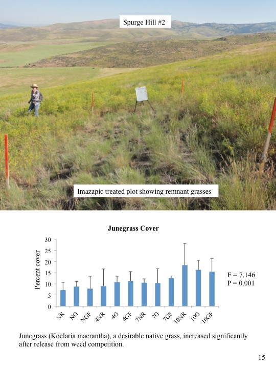 Evaluation of 2010 Treatments of Category 3 Areas: Spurge Hill 2