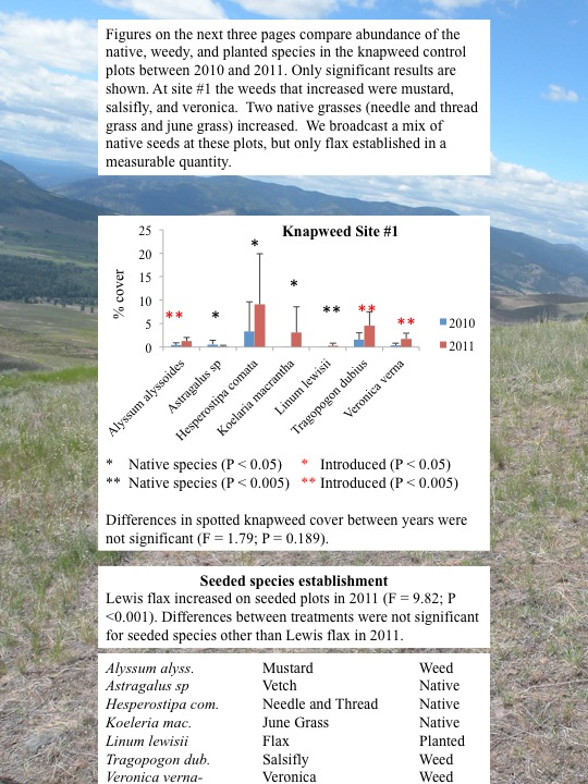 Evaluation of Plant Community Changes on Knapweed Plots: Knapweed Plot 1
