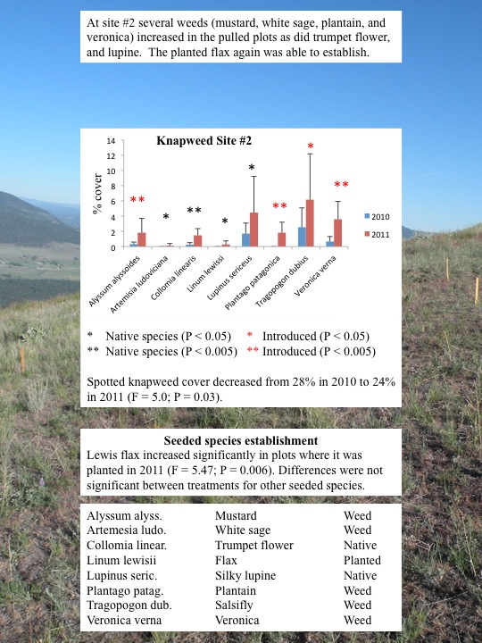 Evaluation of Plant Community Changes on Knapweed Plots: Knapweed Site 2