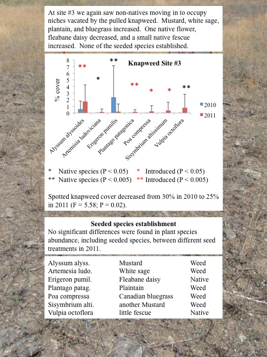 Evaluation of Plant Community Changes on Knapweed Plots: Knapweed Site 3