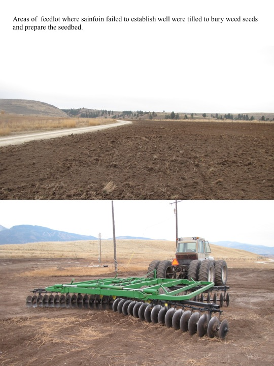 11-04-11 Restoration Update: Feedlot Areas Tilled