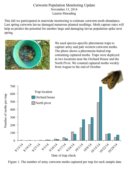 Moth capture rates will help us predict the potential for another large and damaging larvae population spike next spring.
