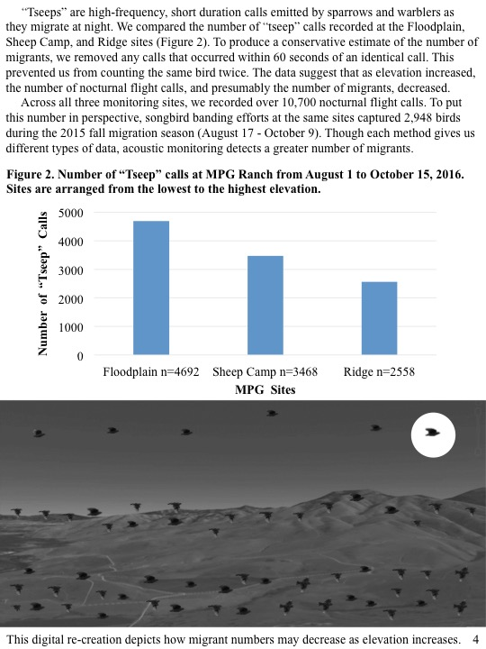 """Tseeps"" are high-frequency, short duration calls emitted by sparrows and warblers as they migrate at night. We compared the number of ""tseep"" calls recorded at the Floodplain, Sheep Camp, and Ridge sites (Figure 2). To produce a conservative estimate of the number of migrants, we removed any calls that occurred within 60 seconds of an identical call. This prevented us from counting the same bird twice. The data suggest that as elevation increased, the number of nocturnal flight calls, and presumably the number of migrants, decreased. Across all three monitoring sites, we recorded over 10,700 nocturnal flight calls. To put this number in perspective, songbird banding efforts at the same sites captured 2,948 birds during the 2015 fall migration season (August 17 - October 9). Though each method gives us different types of data, acoustic monitoring detects a greater number of migrants."
