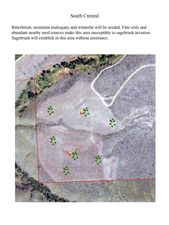 Bitterbrush, mountain mahogany and winterfat will be seeded. Fine soils and abundant nearby seed sources make this area susceptible to sagebrush invasion. Sagebrush will establish in this area without assistance.