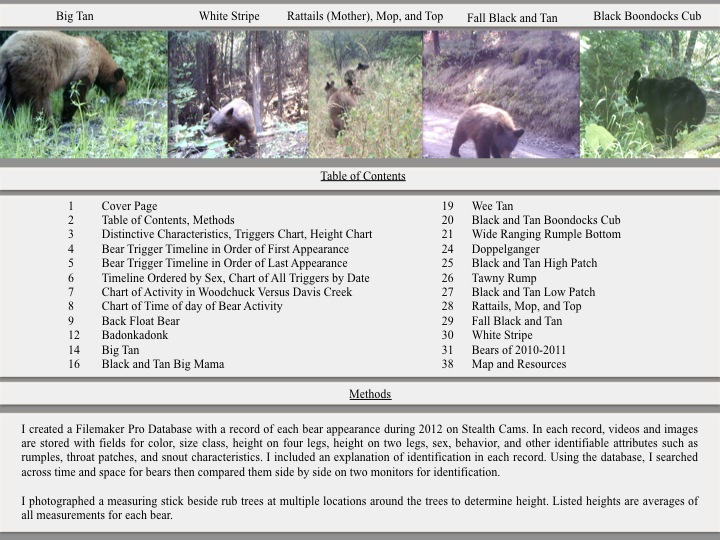 2012 Ranch Bears Table of Content