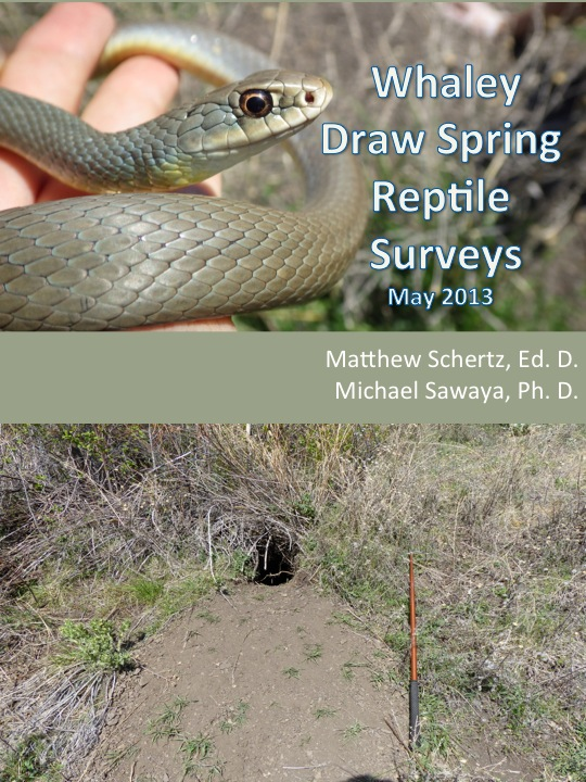 2013 Spring Reptile Surveys