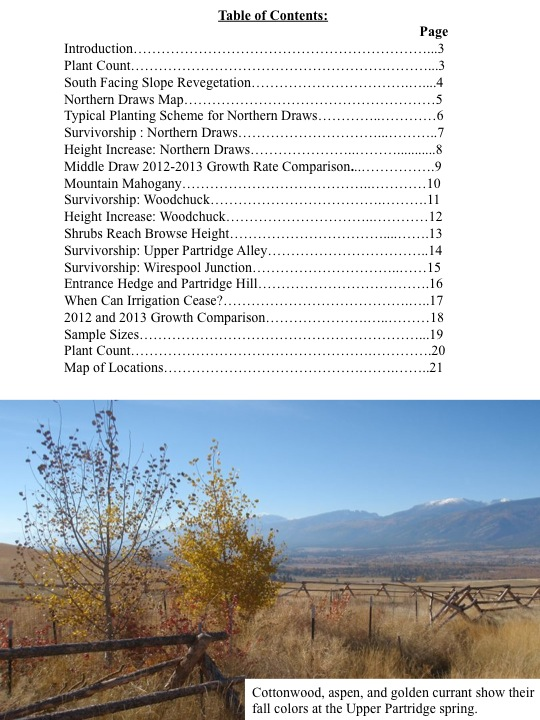Table of Contents:  Cottonwood, aspen, and golden currant show their fall colors at the Upper Partridge spring.