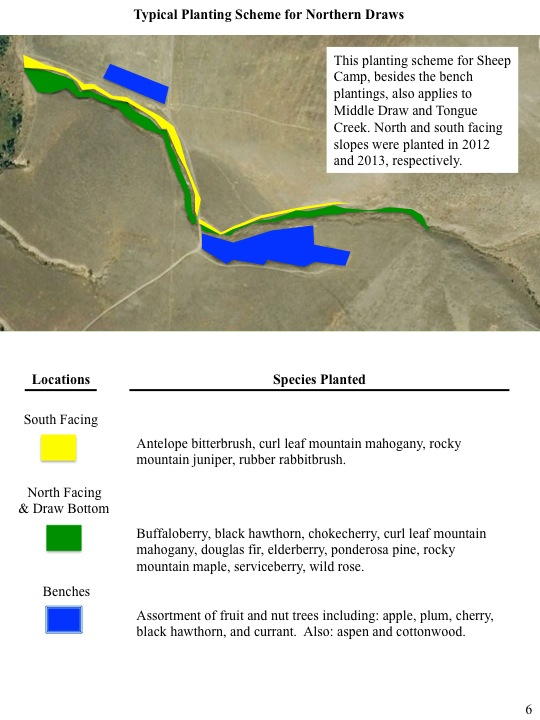 Typical Planting Scheme for Northern Draws map and metrics below.